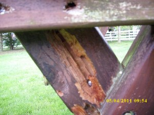 carpenter bee damage.evidence 001